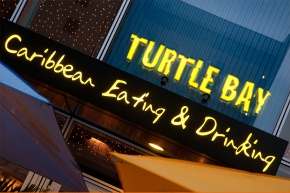Turtle Bay: A slice of sunshine