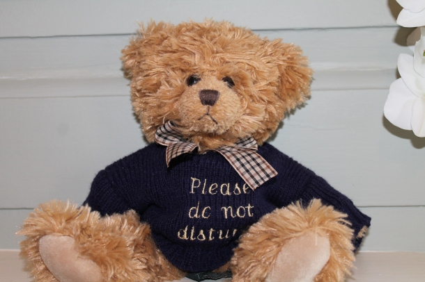 The 'Do Not Disturb' teddy bear at Nanteos Mansion