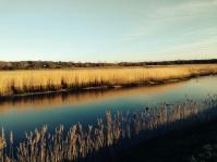 Marshes at Snape Maltings. No filter